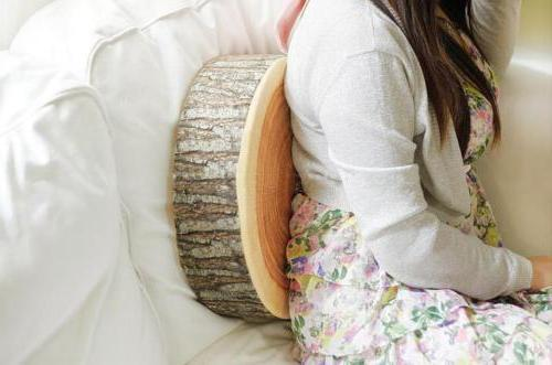 3D Couch Pillow Cushion Seat Pad