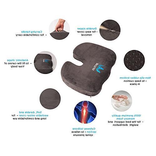 SOFTaCARE Orthopedic Memory Foam Lumbar Support Pillow, of 2, Dark